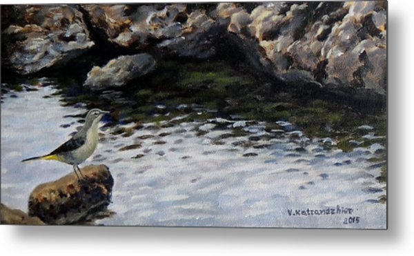 Down By The Water Metal Print