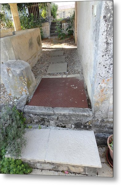 Down The Garden Path Metal Print by Tina Concetta Marzocca