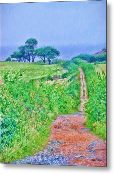 Down To The Sea Herm Island Metal Print