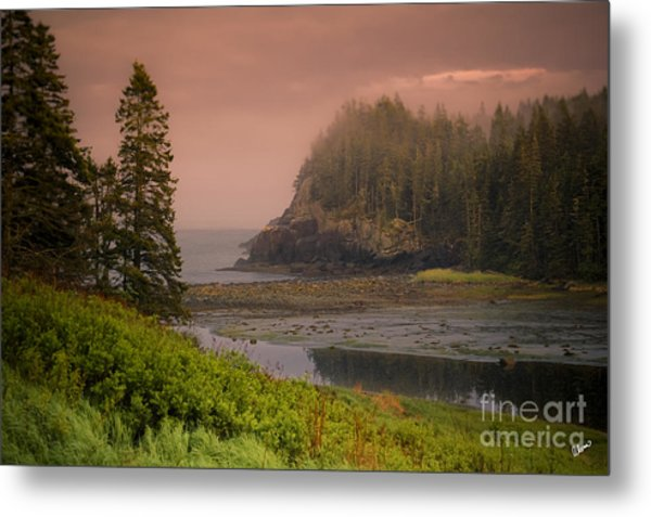 Downeast Coast Metal Print
