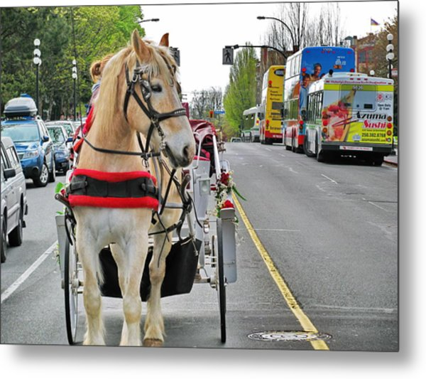 Downtown Horses Buses And Cars Metal Print