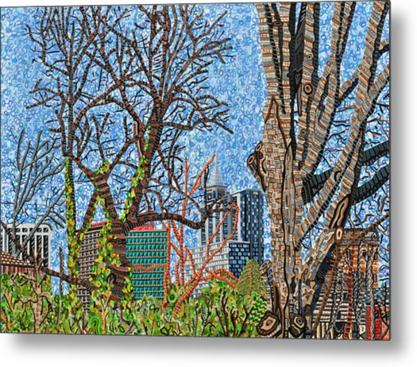 Downtown Raleigh - View From Chavis Park Metal Print by Micah Mullen