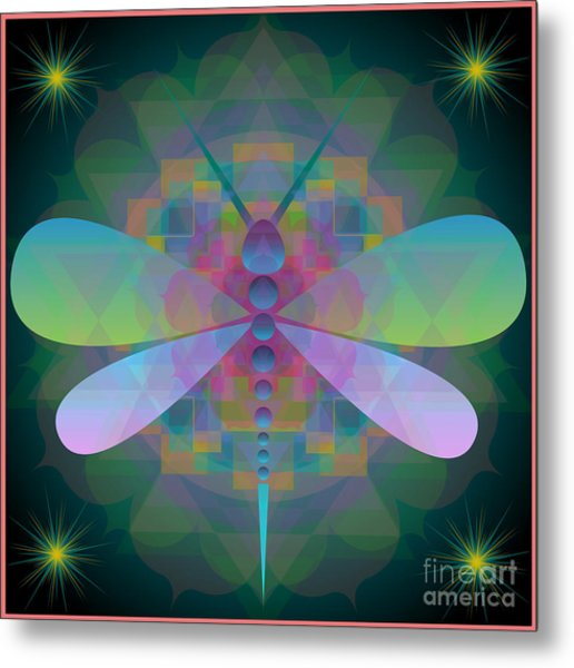 Dragonfly 2013 Metal Print