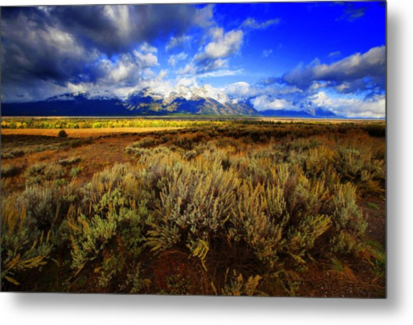 Dramatic Jackson And Salt Lake Metal Print