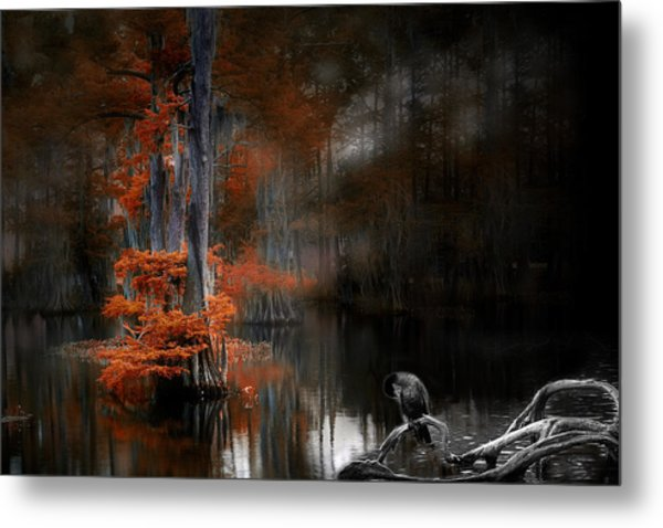 Dramaticlake2 Metal Print by Cecil Fuselier