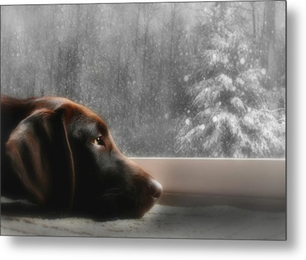 Dreamin' Of A White Christmas Metal Print