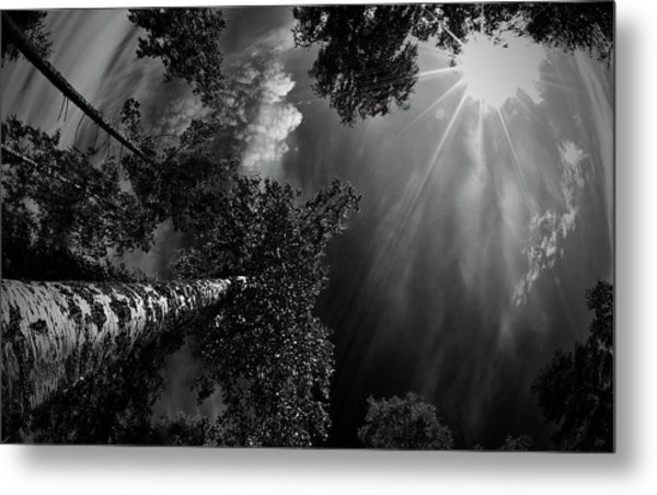Dreaming Before The Thunder Metal Print