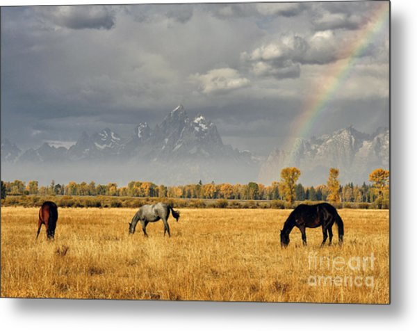 Dreams At The End Of The Rainbow Metal Print by Deby Dixon