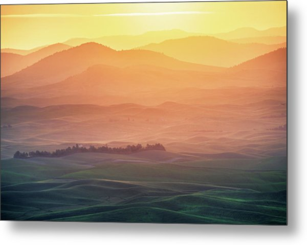 Dreamy Morning Metal Print