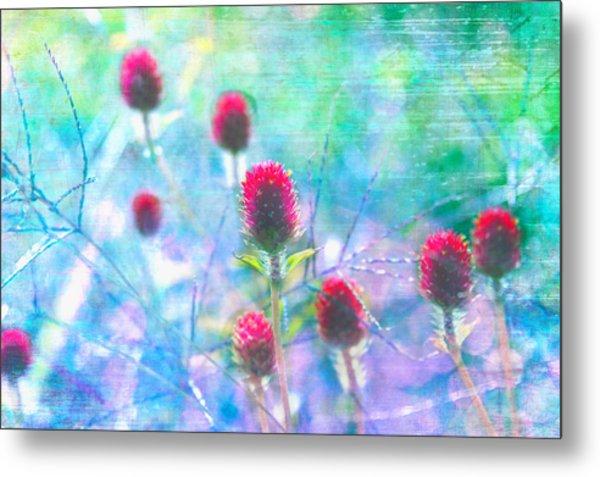 Dreamy Red Spiky Flowers 2 Metal Print by Karen Stephenson