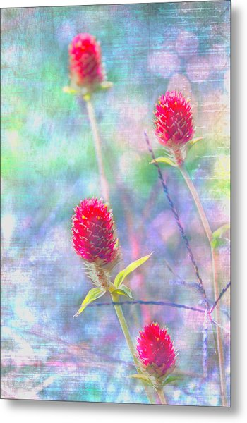 Dreamy Red Spiky Flowers Metal Print by Karen Stephenson