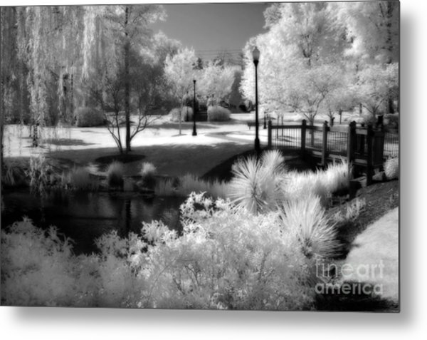 Surreal Infrared Black White Infrared Nature Landscape - Infrared Photography Metal Print