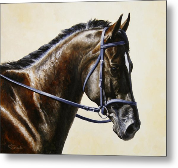 Dressage Horse - Concentration Metal Print