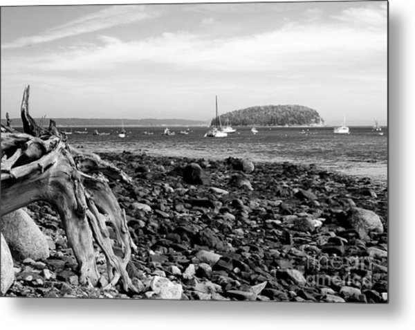 Metal Print featuring the photograph Driftwood And Harbor by Jemmy Archer