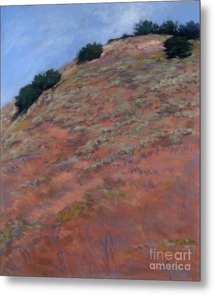 Drum Canyon - Late Spring-  1 Metal Print