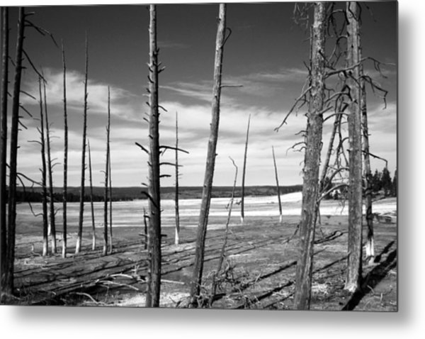 Dry Lake Bed Metal Print
