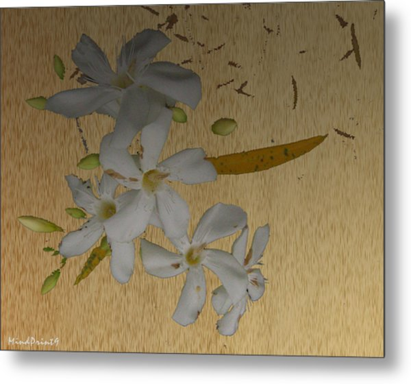 Dry Leaves And Fowers Metal Print