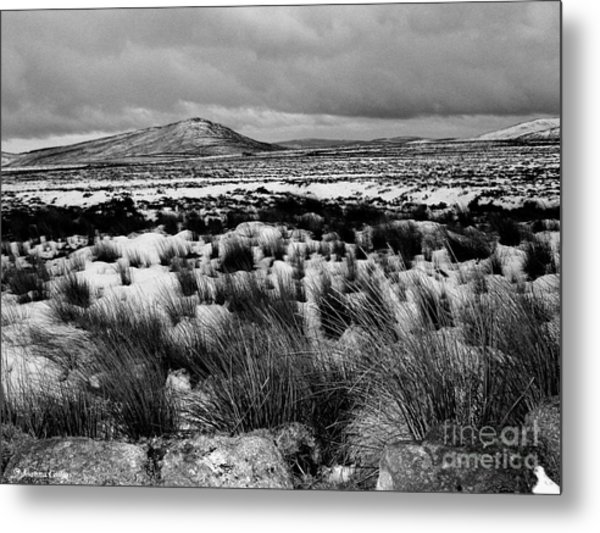 Dublin Mountains In Winter Ireland Metal Print by Jo Collins