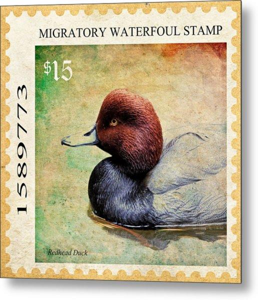 Duck Stamp  Metal Print