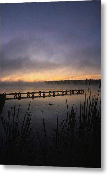 Ducks Dock And Reeds Metal Print
