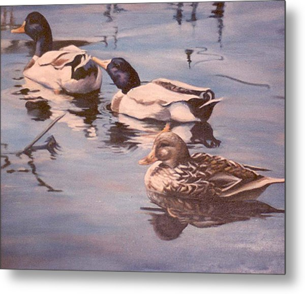 Ducks On The Cachuma Metal Print