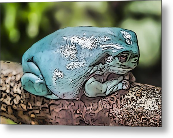00014 Dumpy Tree Frog Metal Print