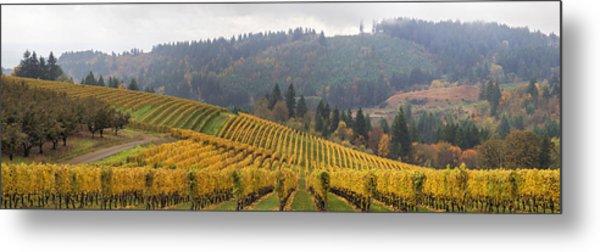 Dundee Oregon Vineyards Scenic Panorama Metal Print