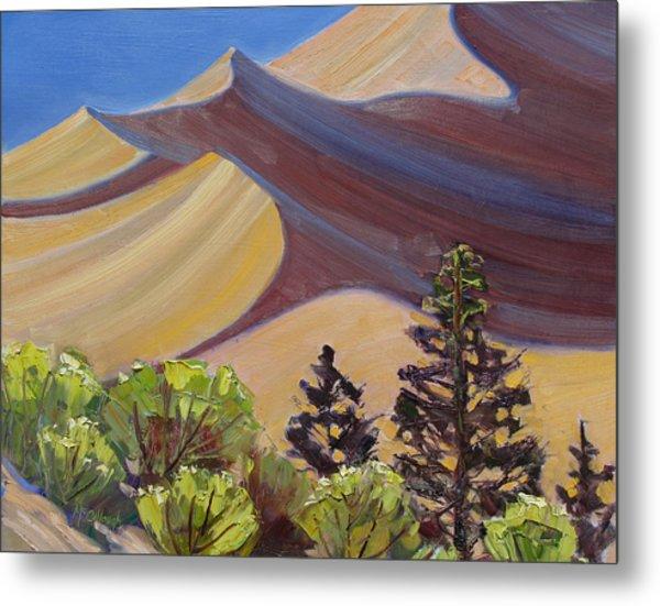 Dune Field Metal Print by Susan McCullough