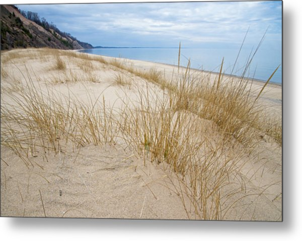Metal Print featuring the photograph Dune Grass On Lake Michigan by Mary Lee Dereske
