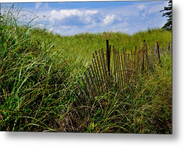 Dunes On Prince Edward Island Metal Print