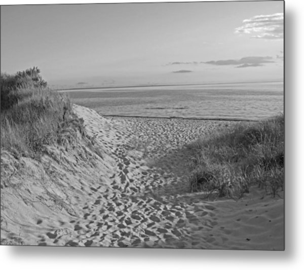 Dunes Walk Metal Print