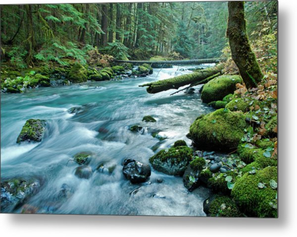 Dungeness River In Olympic National Metal Print