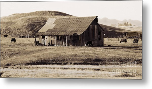 Durham California Barn Metal Print