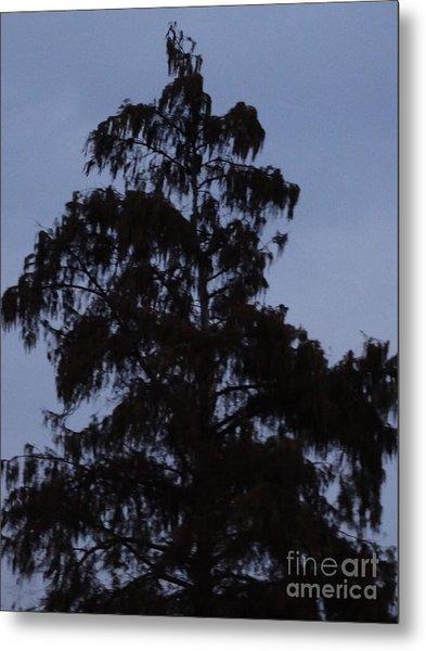 Dusk Tree Metal Print