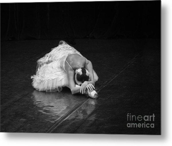 Dying Swan 4. Metal Print