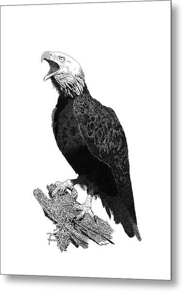 Eagle 1 Metal Print