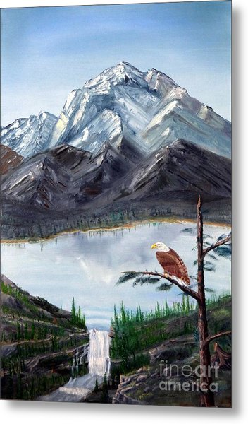 Eagle At Denali Metal Print by Stephen Schaps