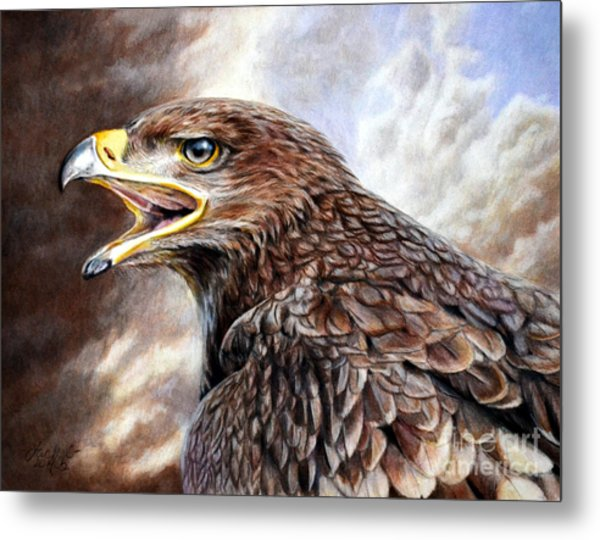 Eagle Cry Metal Print