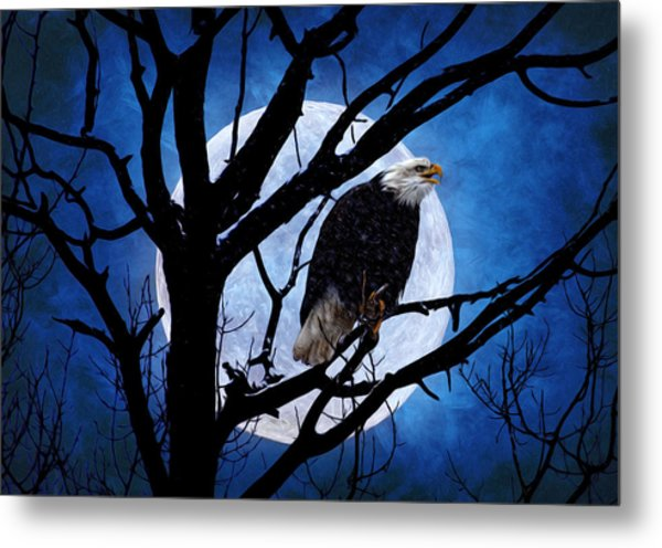 Eagle Night Metal Print