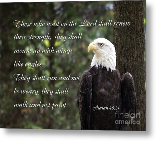 Eagle Scripture Isaiah Metal Print