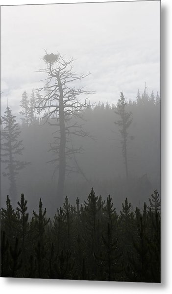 Eagle's Nest In Fog Metal Print