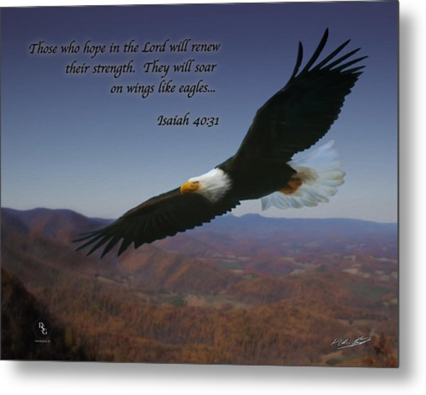 Eagles Wings Metal Print