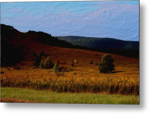 Early Autumn Field Metal Print