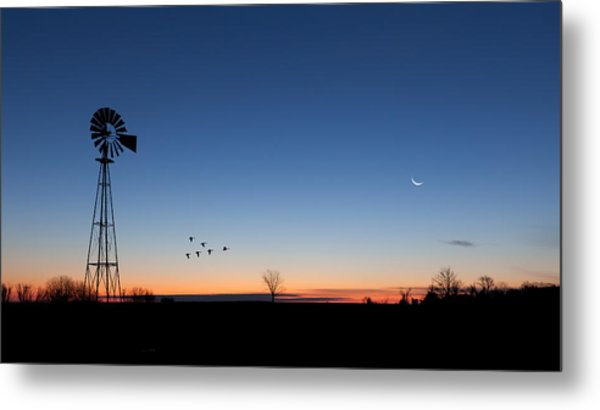 Early Birds Metal Print