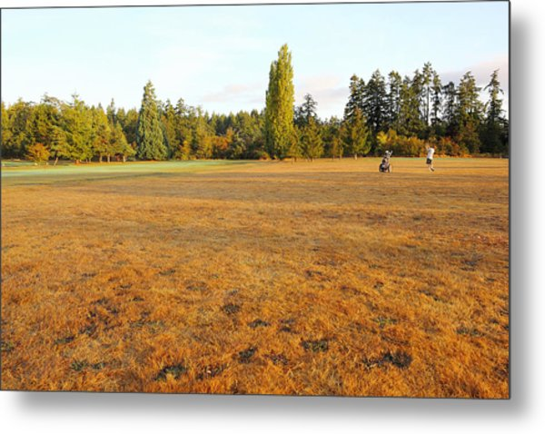 Early Fall Morning In The Rough On The Golf Course Metal Print