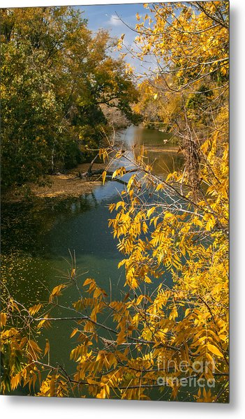 Early Fall On The Navasota Metal Print