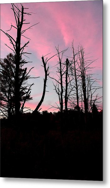 Early Fall Sky Vii Metal Print by Brian Lucia