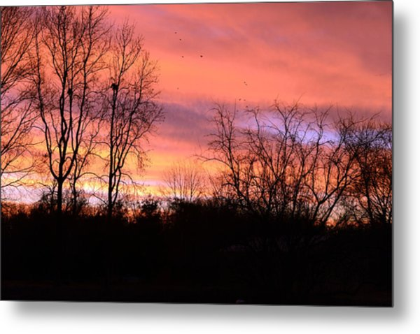 Early Morning Color Canvass Metal Print