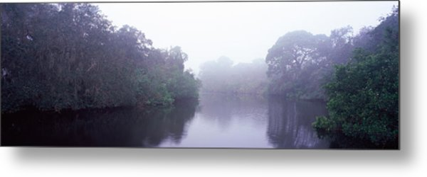 Early Morning Fog On A Creek, South Metal Print