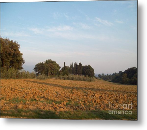 Early Morning In Loppiano Metal Print